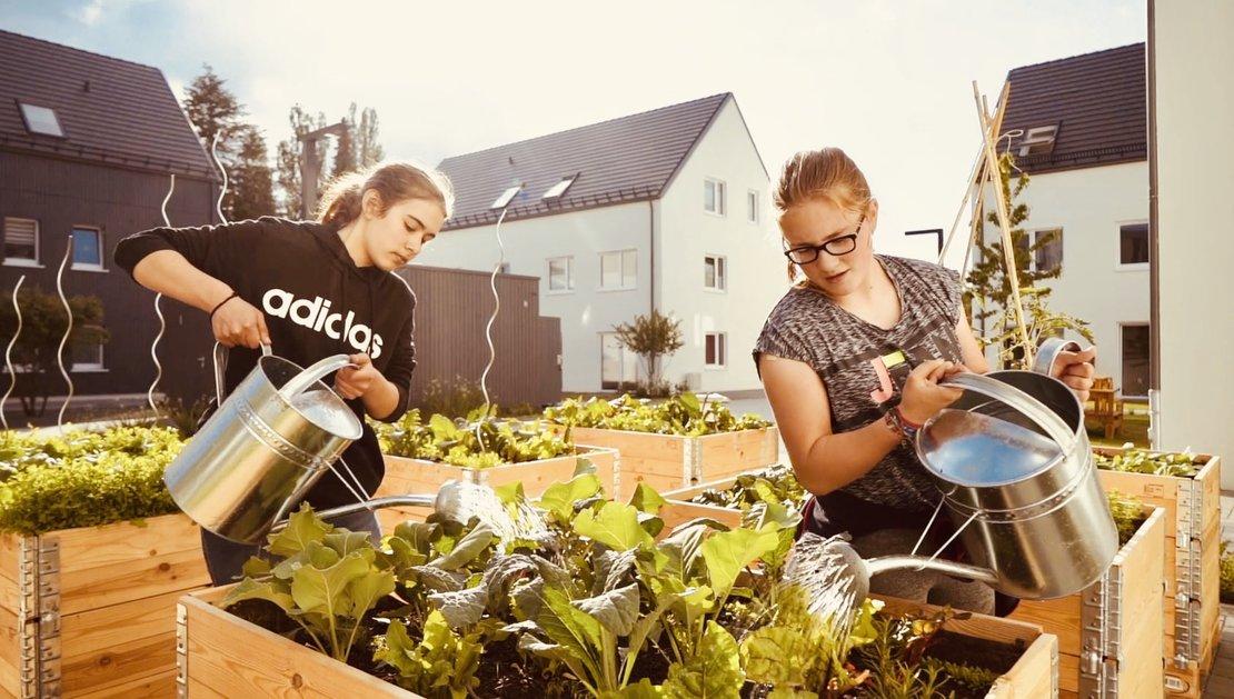 Teilerhöfe_Urban Gardening_Wohnungsunternehmen Gundlach